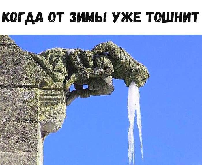 когда от зимы уже тошнит