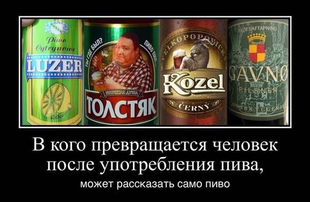после употребления пива