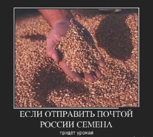 если семяна отправить почтой России