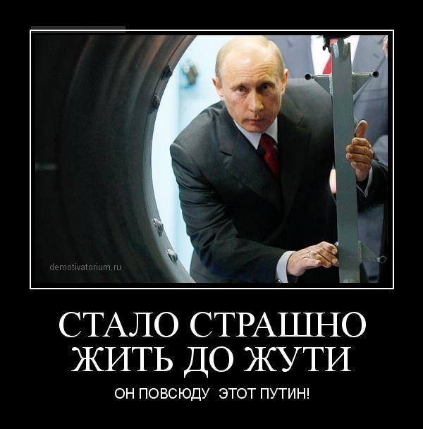 Путин повсюду