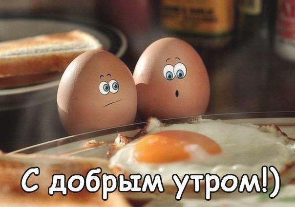с добрым утром яйца