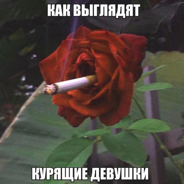 как выглядят курящие девушки