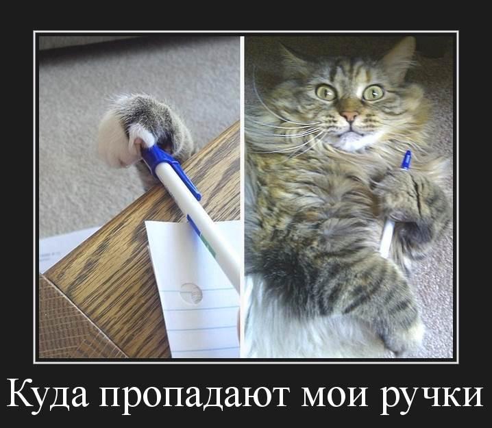 куда пропадают мои ручки